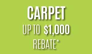 Spring Sale! Carpet up to $1000 carpet manufacturer rebate. Free professional installation